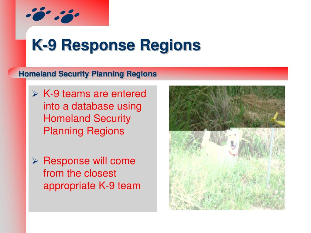 K-9 teams are entered into a database using Homeland Security Planning Regions
