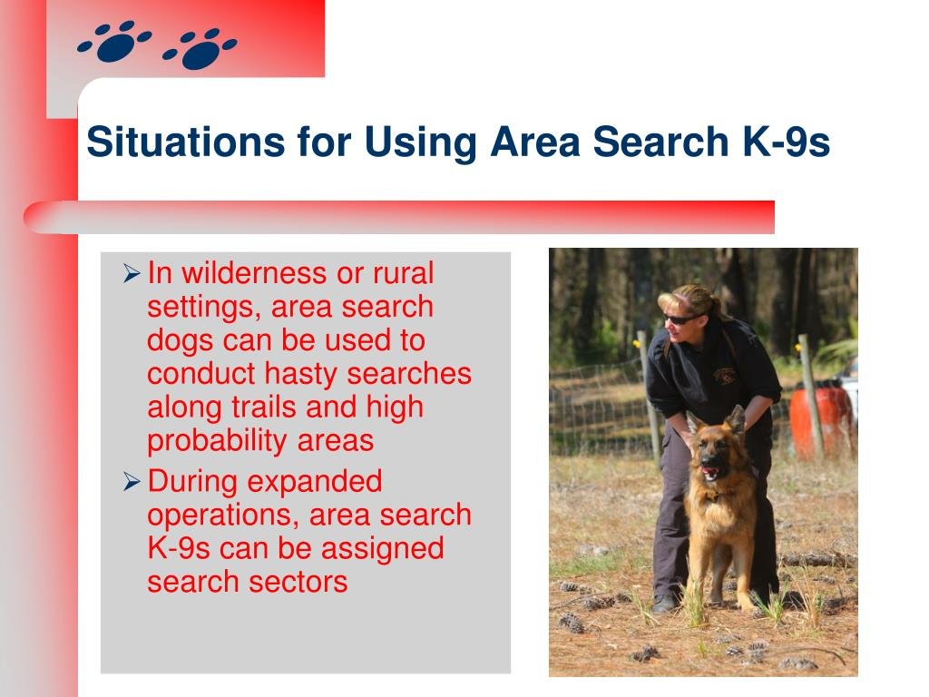 Situations for Using Area Search K-9s