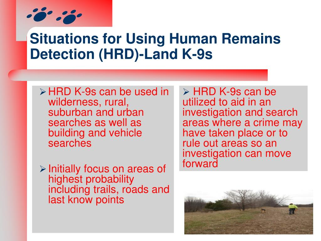 Situations for Using Human Remains Detection (HRD)-Land K-9s