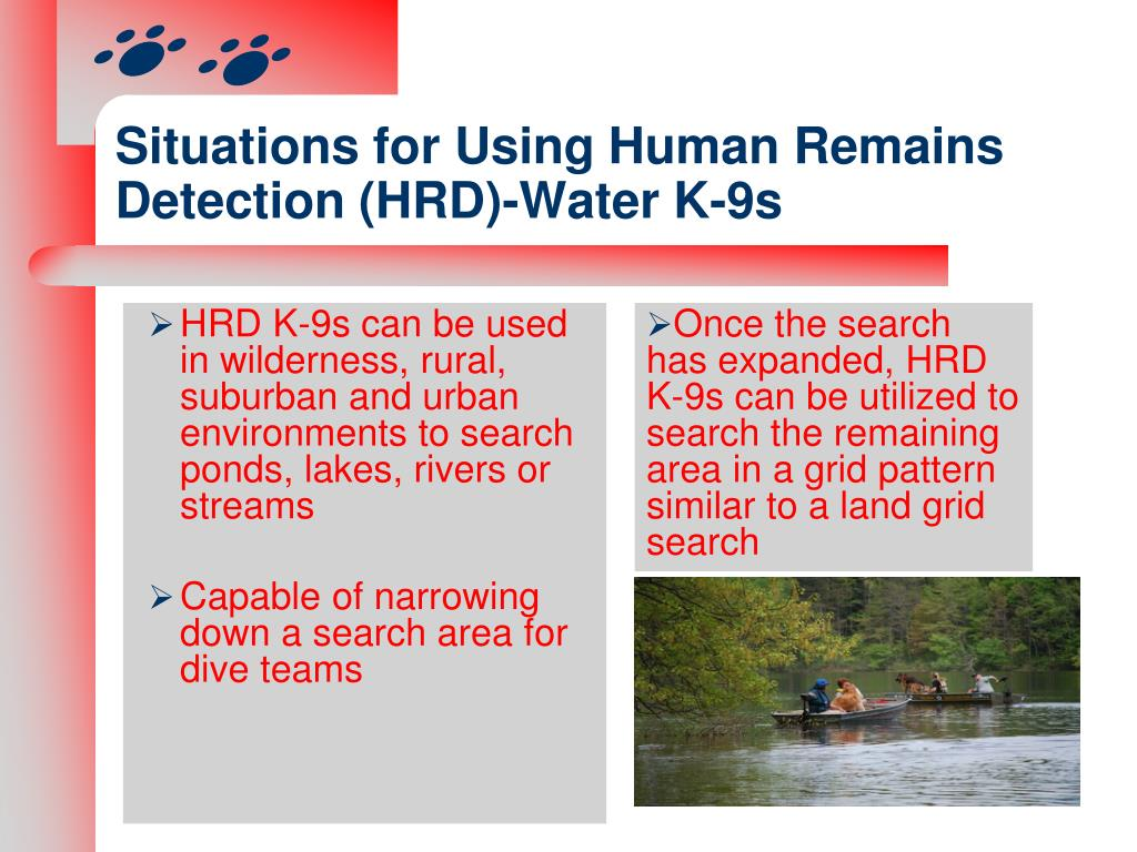 Situations for Using Human Remains Detection (HRD)-Water K-9s