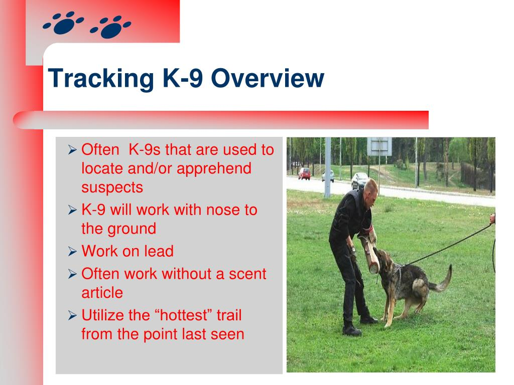 Tracking K-9 Overview
