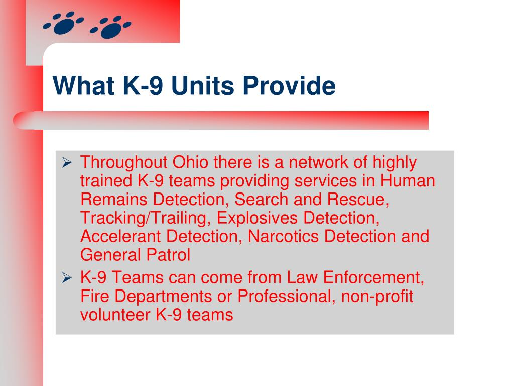 What K-9 Units Provide