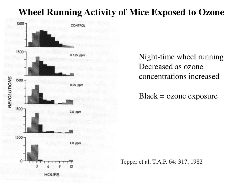 Wheel Running Activity of Mice Exposed to Ozone