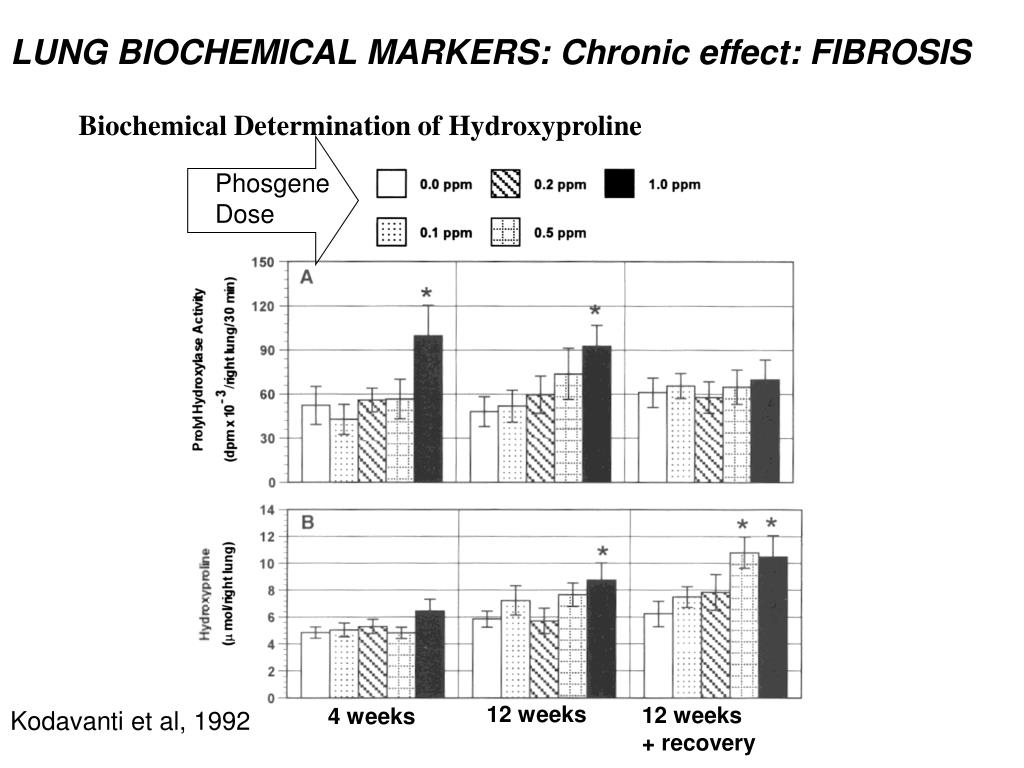 LUNG BIOCHEMICAL MARKERS: Chronic effect: FIBROSIS