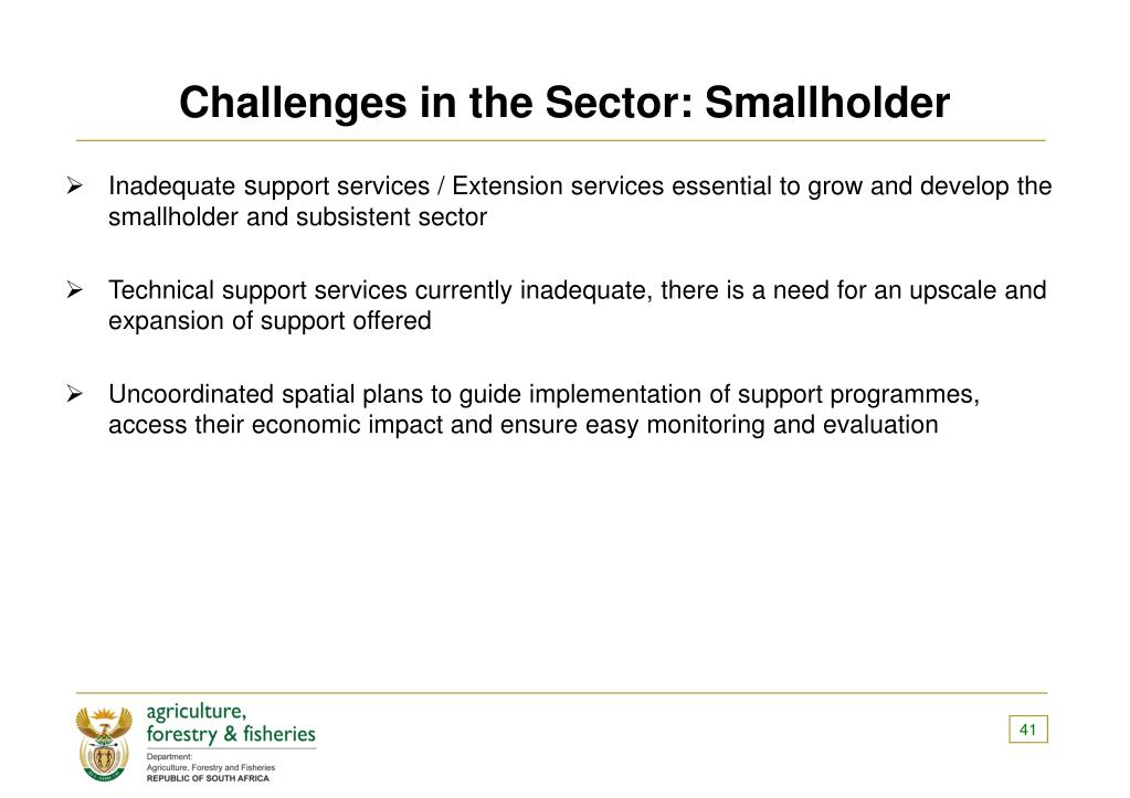 Challenges in the Sector: Smallholder
