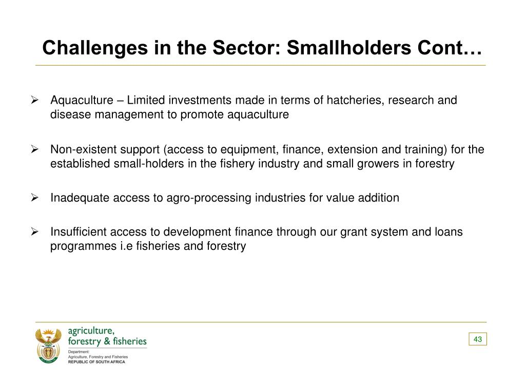 Challenges in the Sector: Smallholders Cont…