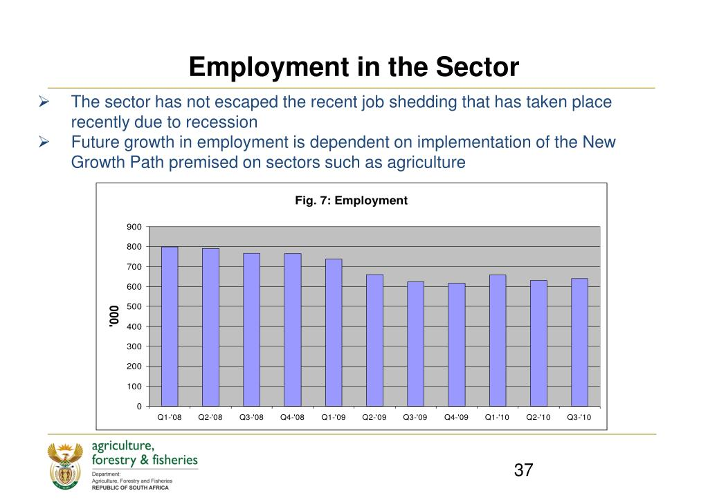 Employment in the Sector