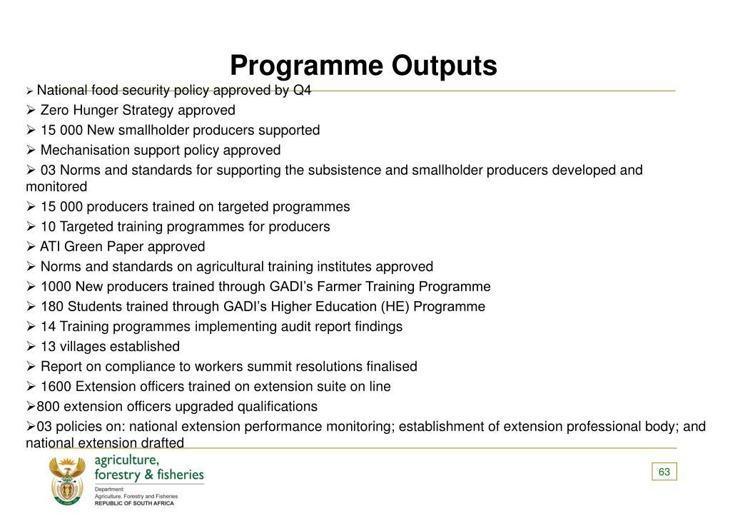 Programme Outputs