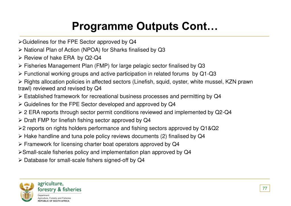 Programme Outputs Cont…