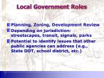 local government roles