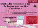 effect on the development of the coffee character and the toastiness