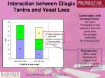 interaction between ellagic tanins and yeast lees