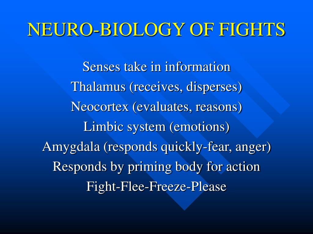 NEURO-BIOLOGY OF FIGHTS