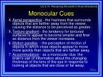 monocular cues66