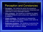 perception and constancies