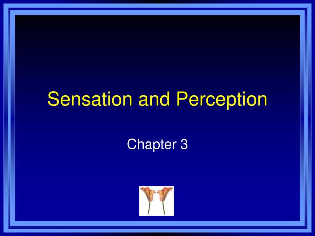 sensation and perception l.