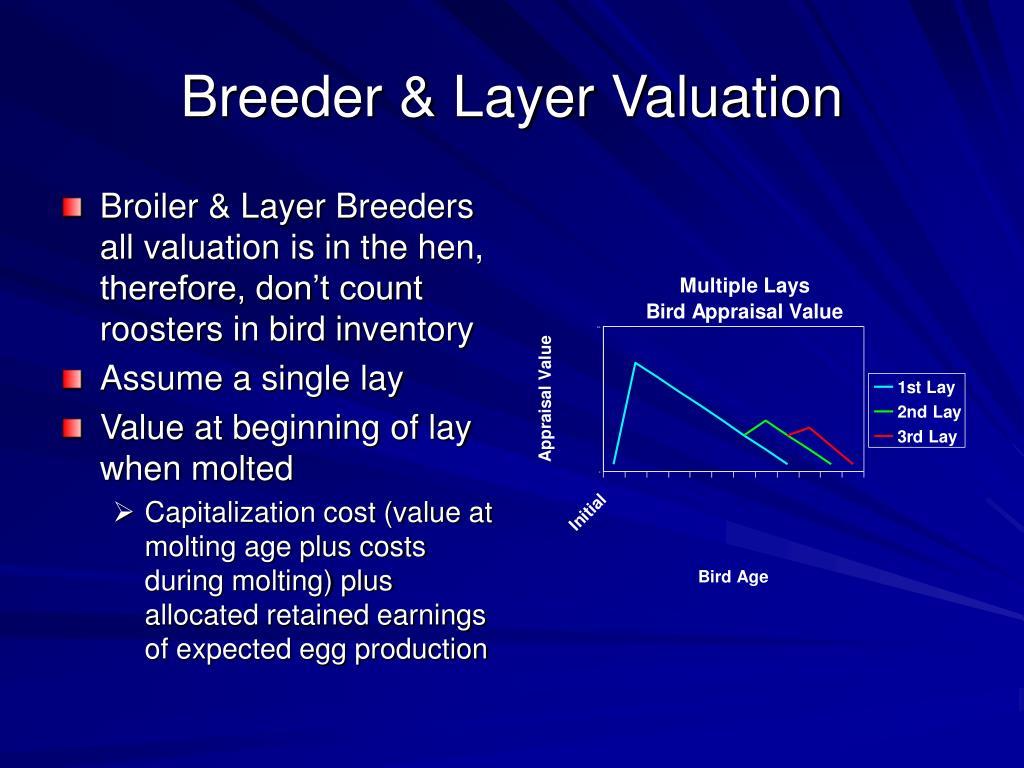 Breeder & Layer Valuation