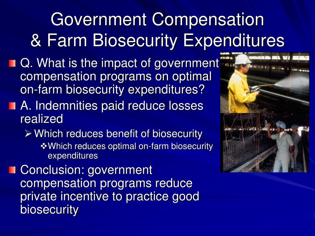 Government Compensation