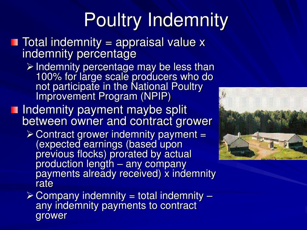 Poultry Indemnity