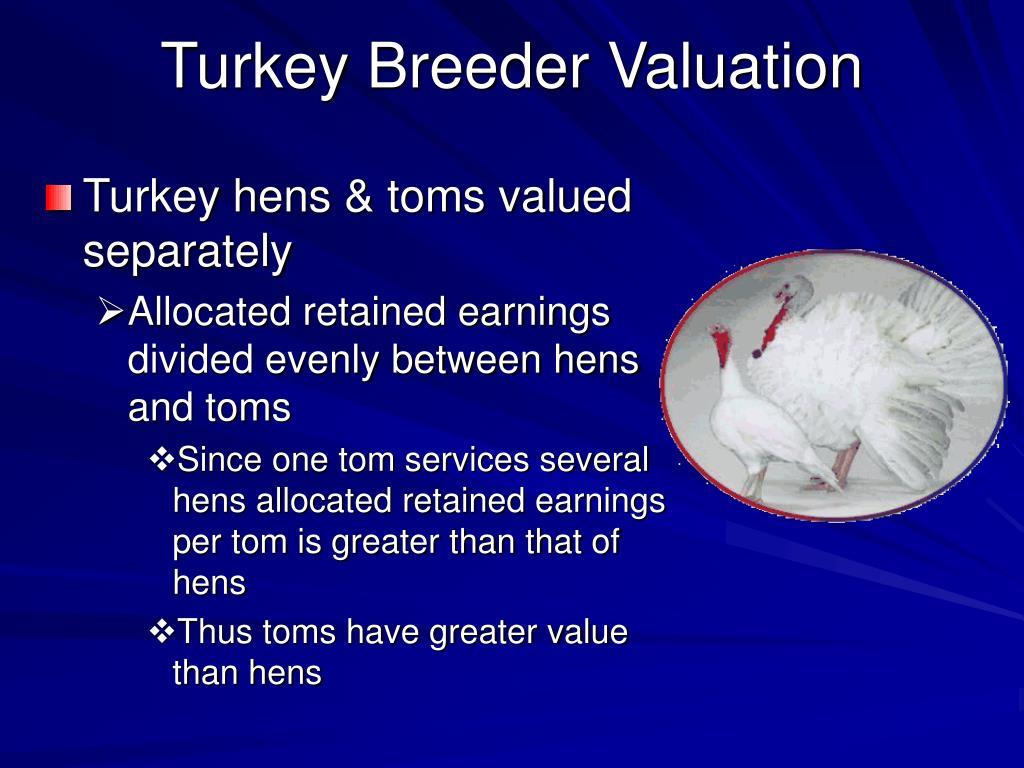 Turkey Breeder Valuation