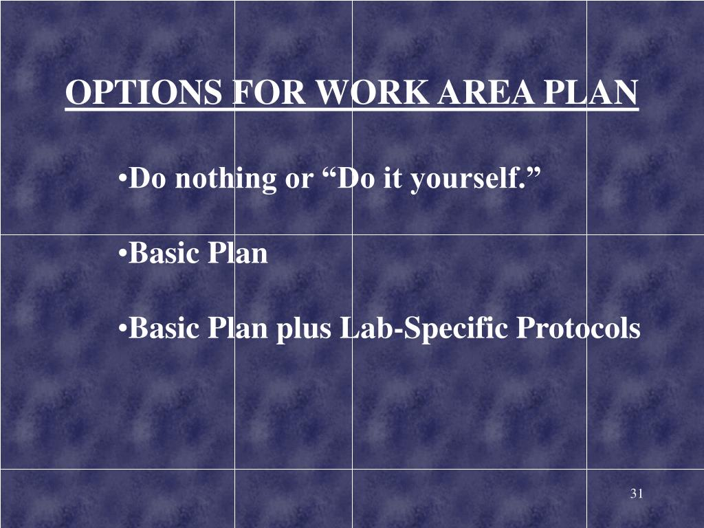OPTIONS FOR WORK AREA PLAN
