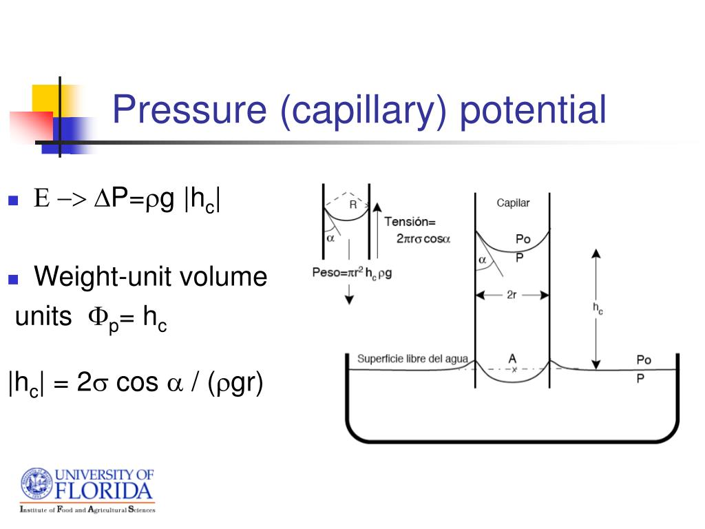 Pressure (capillary) potential