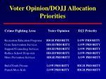 voter opinion dojj allocation priorities