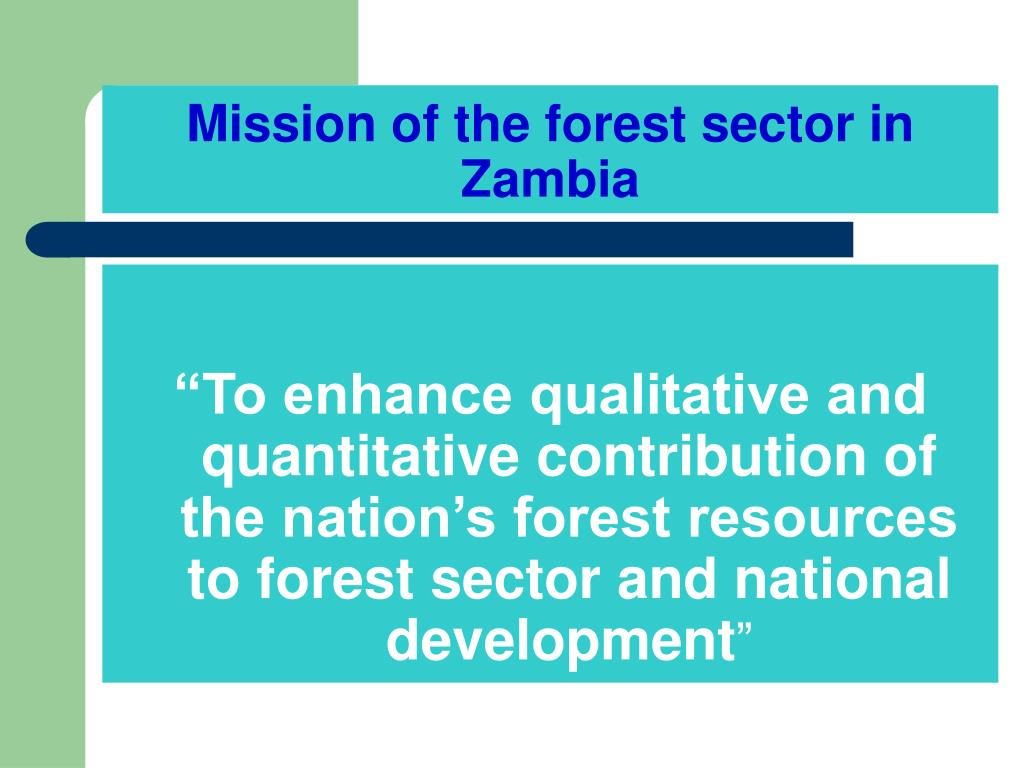 Mission of the forest sector in Zambia