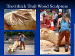 trevithick trail wood sculpture
