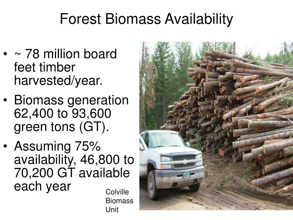 Forest Biomass Availability