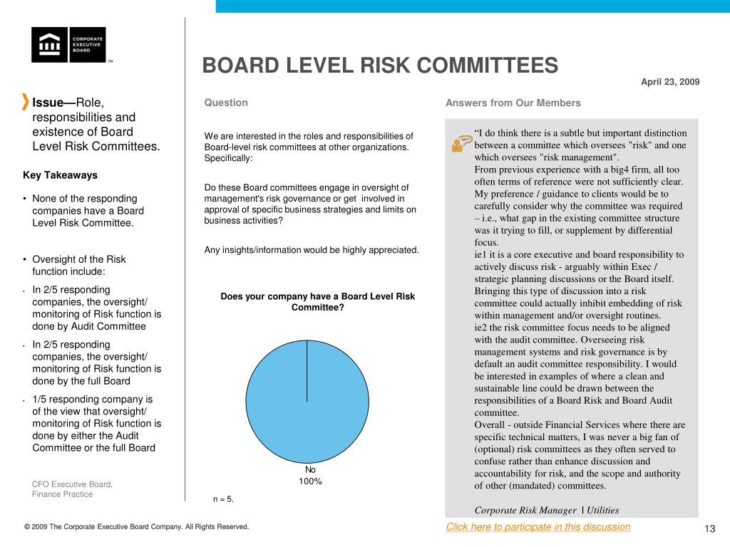 BOARD LEVEL RISK COMMITTEES