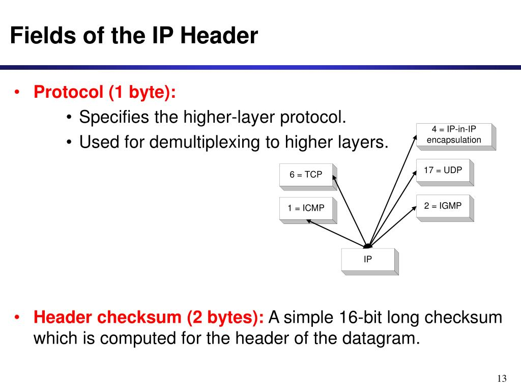 Fields of the IP Header