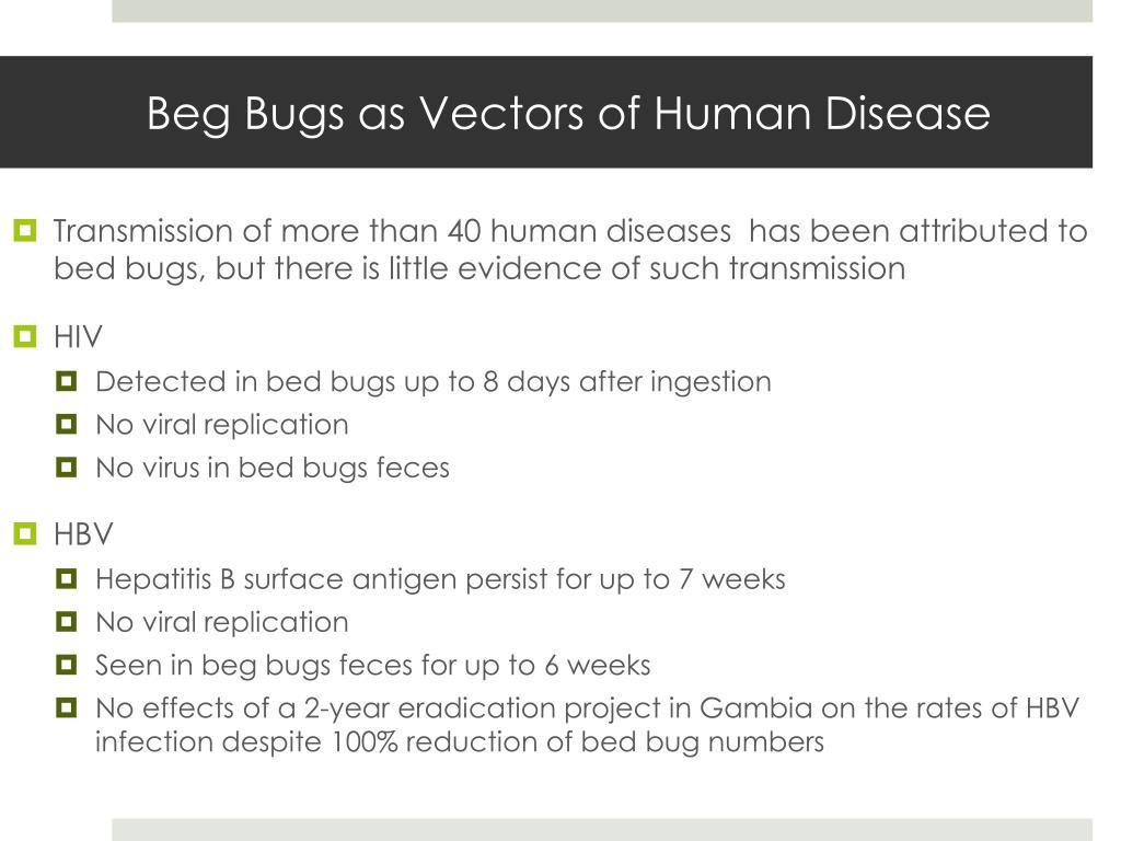 Beg Bugs as Vectors of Human Disease