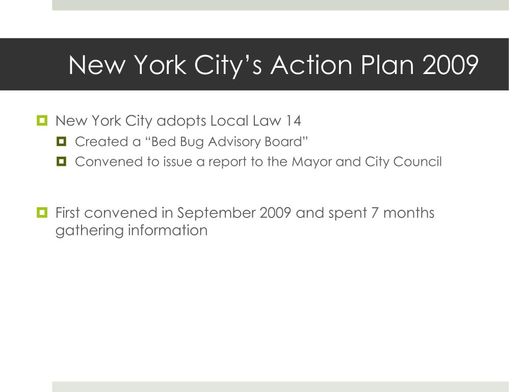 New York City's Action Plan 2009