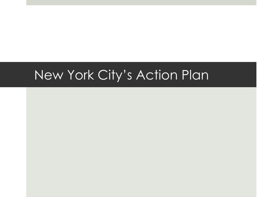 New York City's Action Plan