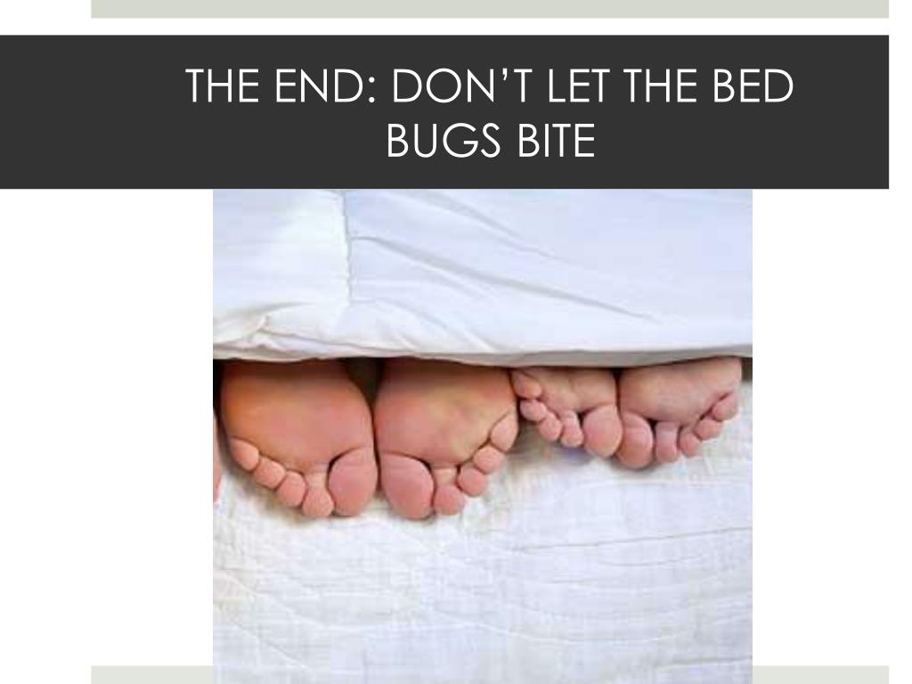 THE END: DON'T LET THE BED  BUGS BITE