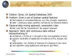spatial association rule