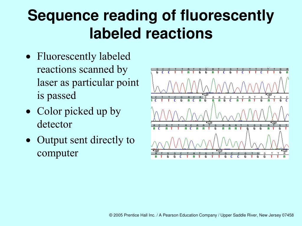 Sequence reading of fluorescently labeled reactions
