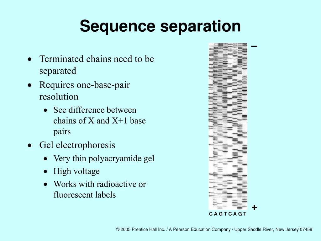 Sequence separation