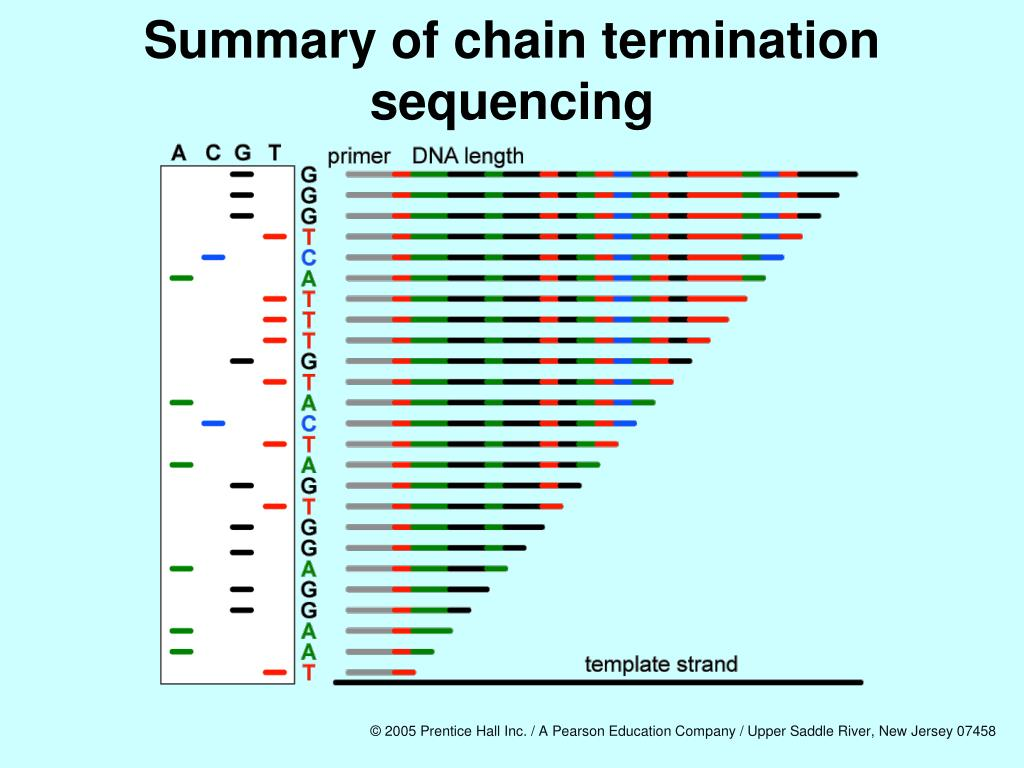 Summary of chain termination sequencing