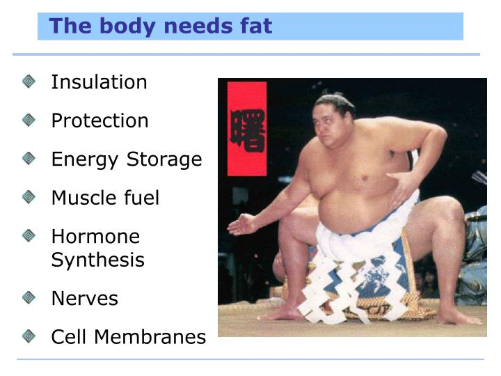 The body needs fat