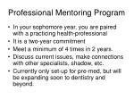 professional mentoring program