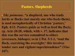 pastors shepherds