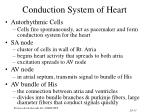conduction system of heart33