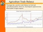 agriculture trade balance