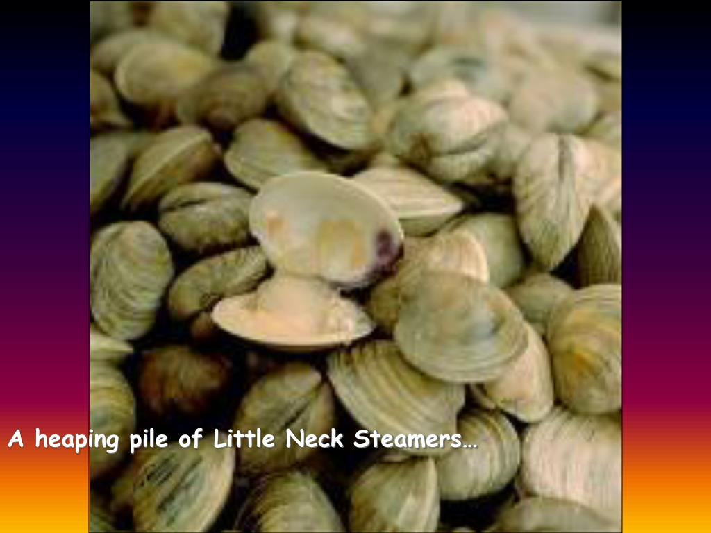 A heaping pile of Little Neck Steamers…