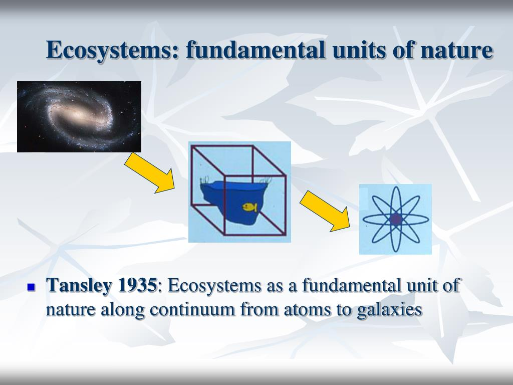 Ecosystems: fundamental units of nature