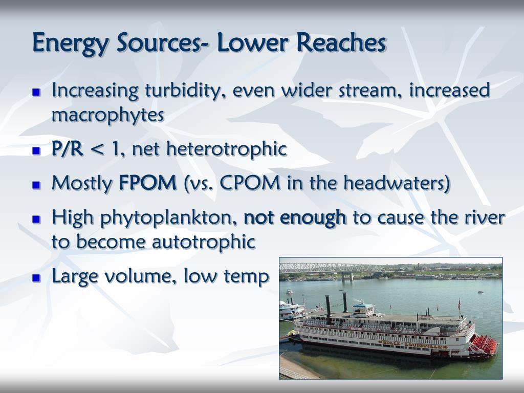 Energy Sources- Lower Reaches
