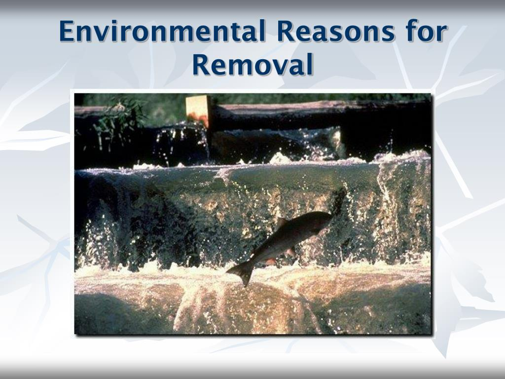 Environmental Reasons for Removal