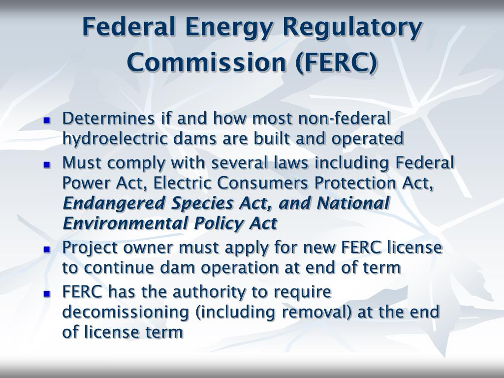 Federal Energy Regulatory Commission (FERC)